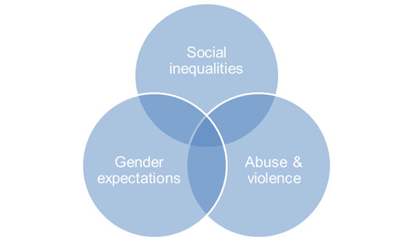 Gender and Inequalities Graphic
